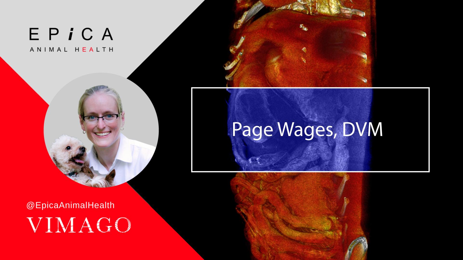 EAH-2021---Vimago-E-Report-Web-Banner---Page-Wages-DVM---1080x1920-V4