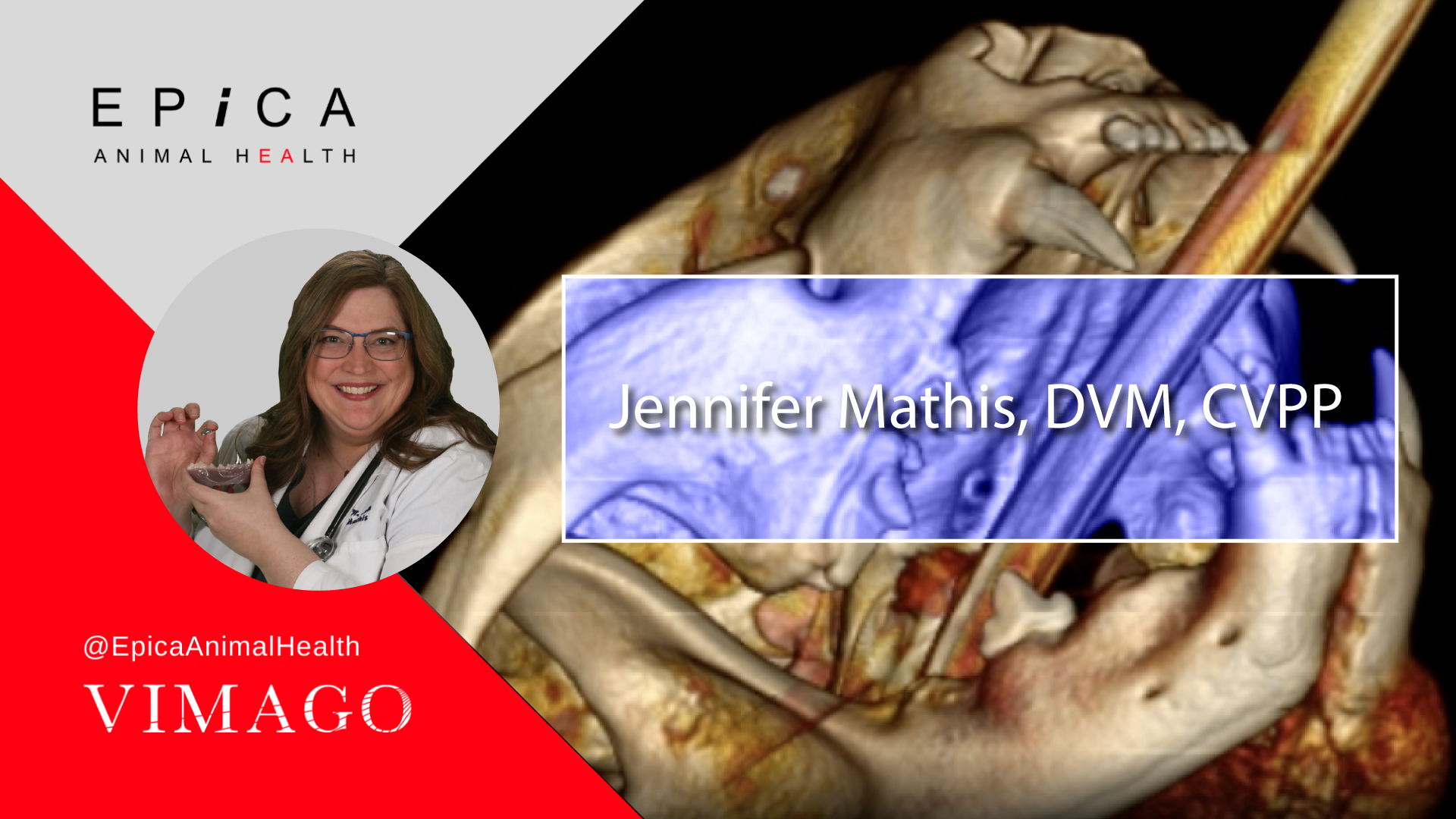 EAH-2021---Vimago-E-Report-Web-Banner---Jennifer-Mathis-DVM---1080x1920-V4